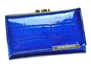 Gregorio BC-108 niebieski